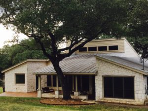 Tree Consultation San Antonio TX